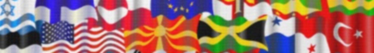 Flag's Site